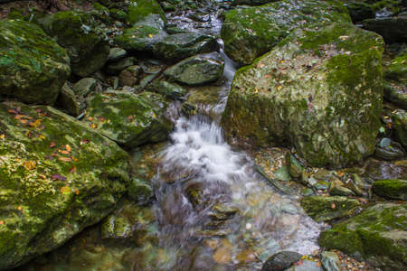 The stream from the mountain mossy rocks slowly flows