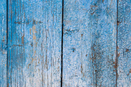 weathering: The blue color paint mottled weathering cracked wooden doors