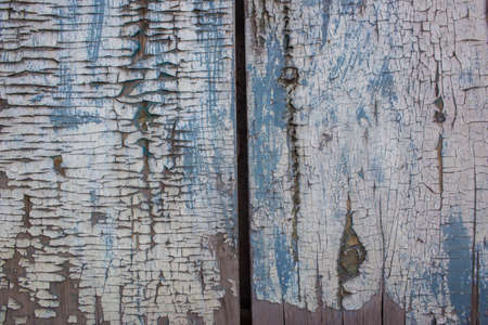 gaudy: Blue gray color mottled paint weathering cracked wooden close-up