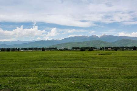 The  green prairie.