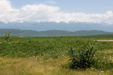 cloud capped: The green prairie.