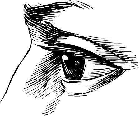 Eye Imagens - 22027866