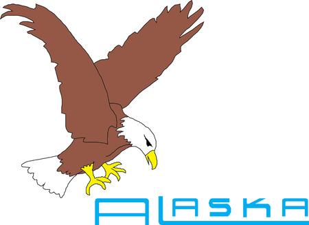 Alaska USA State