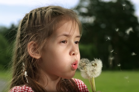 beauty girl blow on dandelion Stock Photo - 10378367