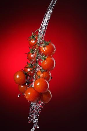 cherry tomato in water splash Stock Photo - 11173045
