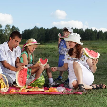 families picnic outdoors with food Stock Photo - 13119014