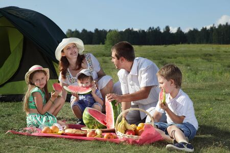 families picnic outdoors with food Stock Photo - 13433056