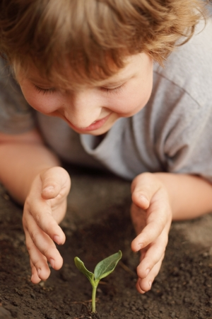 planting: sprout in children hand Stock Photo
