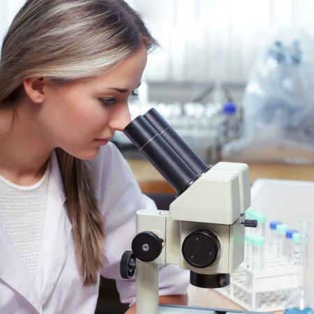 beauty scientist in chemical laboratory Stock Photo - 14113234