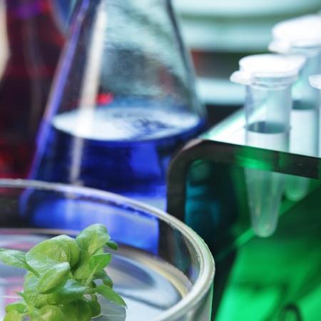 quimica organica: laboratorio