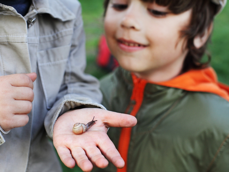 children learn snail, focus on snail photo