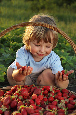 6 7 years: cheerful boy with  basket of berries Stock Photo