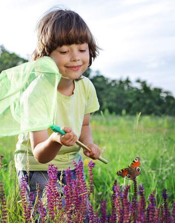 child catches a butterfly photo