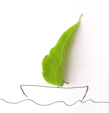 drow: green leaf and draw ship on paper
