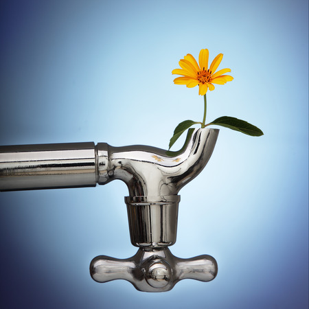 water drops on leaf: flowers sprouted in the metal tap eco concept