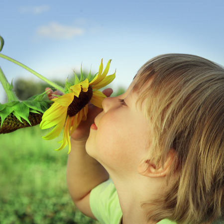 Happy boy with sunflower outdoors photo