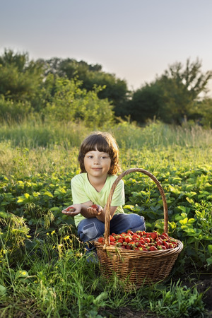 farm field: cheerful boy with basket of berries