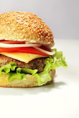 burgers: hamburger