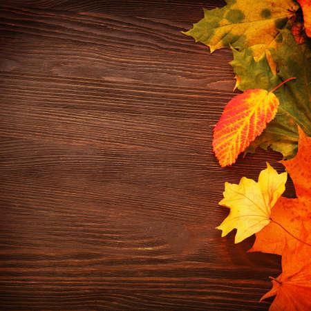 hojas antiguas: hoja de oto�o en el fondo de madera