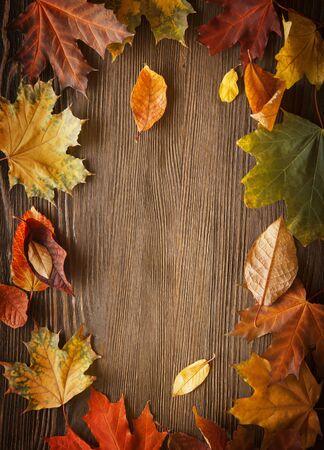 leaves frame: autumn leaf on wood black background Stock Photo