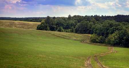 idealistic: idealistic summer landscape with road and meadows Stock Photo