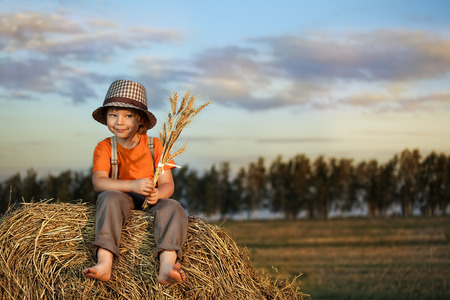 haystack: boy with what on haystack in the field in autumn