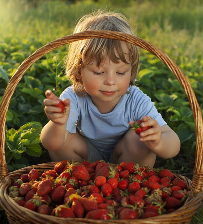 strawberry baskets: cheerful boy with basket of berries