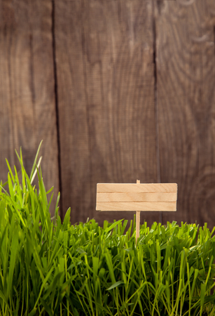 Signboard on Grass background of wood planks, Fresh green lawn near rustic grunge fence Stock Photo