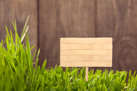 wood grass: Signboard on Grass background of wood planks, Fresh green lawn near rustic grunge fence Stock Photo