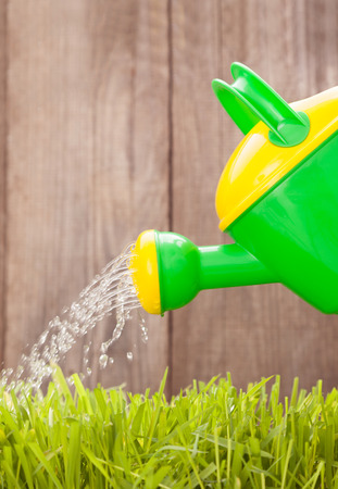 watering can water the grass at a wooden fence on a summer day Stock Photo