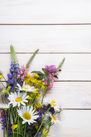 wildflowers: Wild flowers on old grunge wooden background (chamomile lupine dandelions thyme mint bells rape).