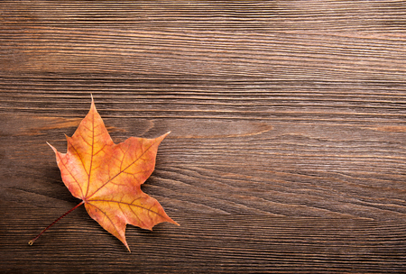 autumn leaf on wood black background (top view) Stock Photo