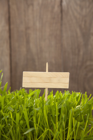 Signboard on Grass of wood planks, Fresh green lawn near rustic grunge fence