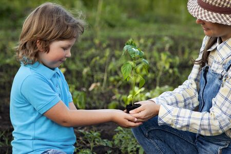 mother gives his sun a germ in summer garden
