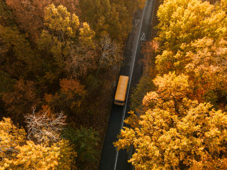 Aerial view of road with school bus in beautiful autumn forest at sunset. Zdjęcie Seryjne