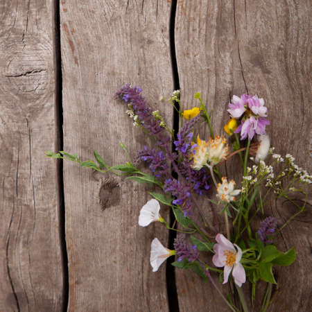 Wild flowers bouquet on wooden old grunge background (chamomile lupine dandelions thyme bells rape)