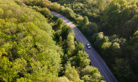 Car on road in the forest in summer time nature from air.