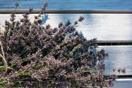 Fresh lavender over wooden Summer background.