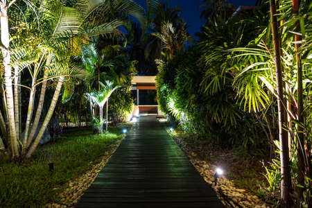 Night lighting in tropical garden,Decorative LED lighting in garden to see the garden pathway at night with palm trees.