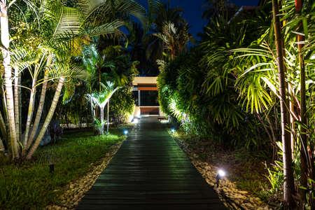 Iluminación nocturna en jardín tropical, Iluminación LED decorativa en jardín para ver el camino del jardín de noche con palmeras.