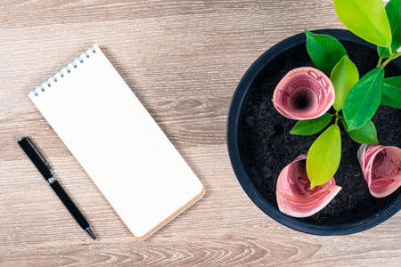 One hundred Chinese yuan bills and money tree growth up in black flower pot placed on wooden table with pen and blank notepad in concept of financial planning, saving money, interest and investment. Banque d'images
