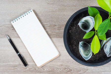 One hundred US dollar bills and money tree growth up in black flower pot placed on wooden table with pen and blank notepad in concept of financial planning, saving money, interest and investment.