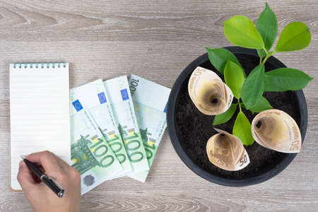 Planting Euro bills and plant in black flower pot placed on wooden table with hand writing on notepad in concept of financial planning, saving money, interest, investment and money growth, copy space.