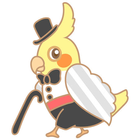 cockatoo: Cockatiel Magician