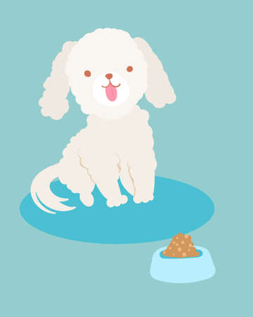 white poodle dog smiles and his food bowl