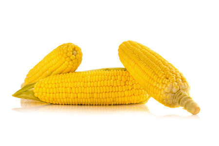 Corn on white background.