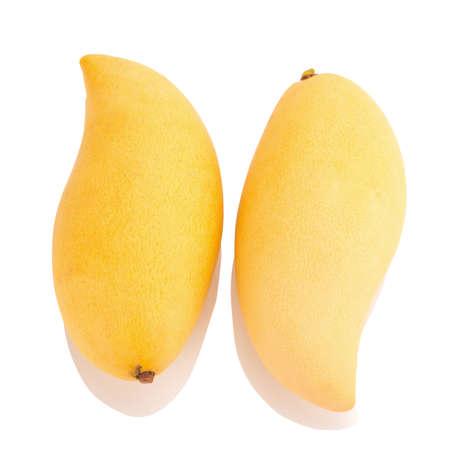 Mango isolated no white background.