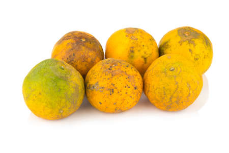 orange. rotten. dirty. six. isolated on white background.