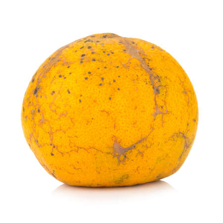 orange. rotten. dirty. isolated on white background.