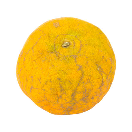 uneatable: orange. rotten. dirty. isolated on white background.